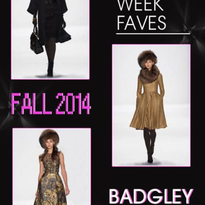 Stacey's Top 5 Faves from New York Fashion Week Fall 2014