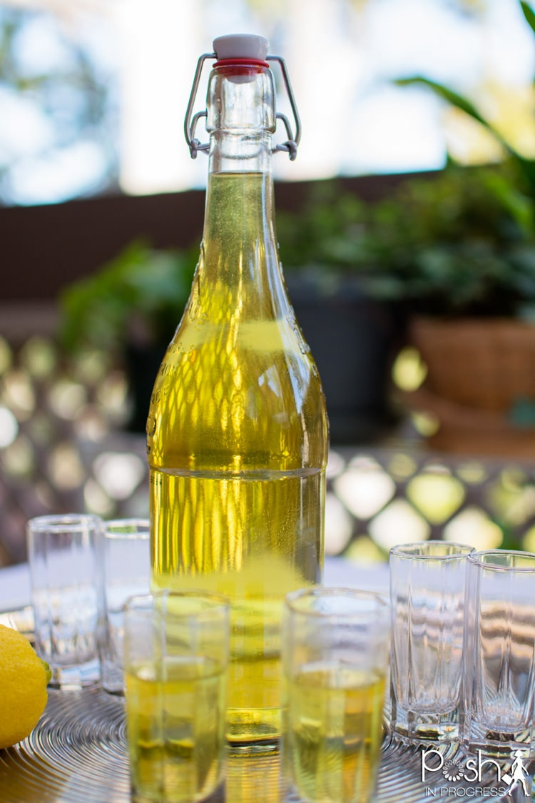 homemade-limoncello-recipe-09