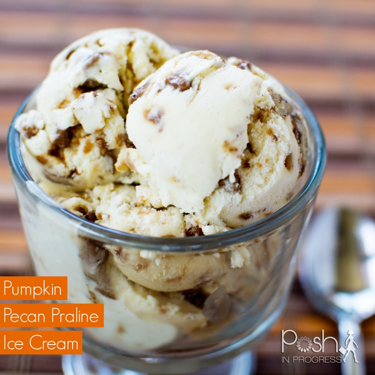 Pumpkin Pecan Praline Ice Cream | Posh in Progress