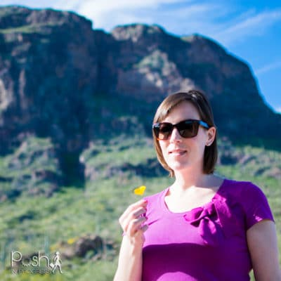 Discovering the Picacho Peak Poppies