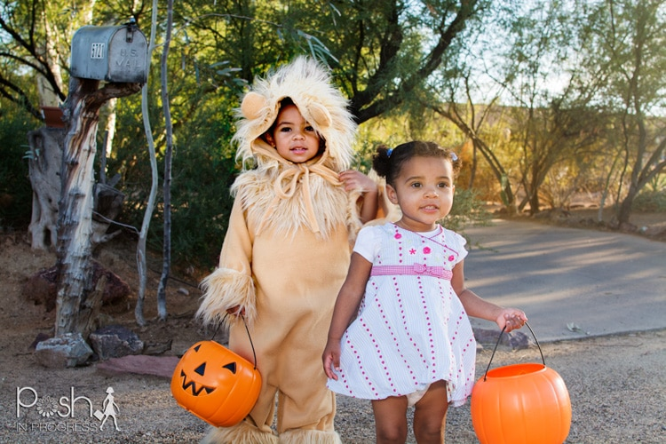 If you looking for a cute homemade diy lion costume for you little for Halloween, please give this easy craft a try.