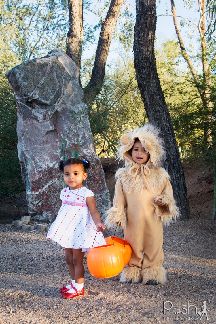 My daughter's little Dorothy red shoes are to die for! I made this homemade lion costume to go with her shoes, do tell my son though!