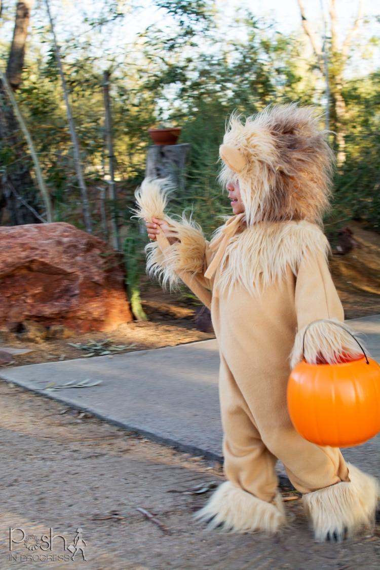 homemade-lion-costume-06