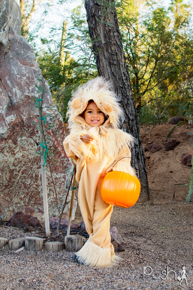 If you want to make a DIY lion costume it is really easy. See Rocco's little tail in the back?