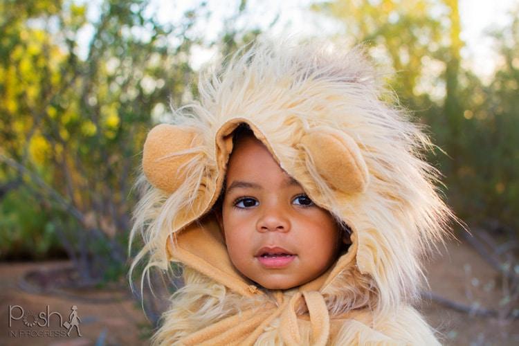homemade-lion-costume-13