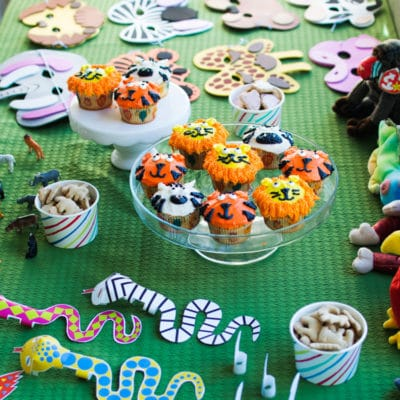Zoo Birthday Party Theme