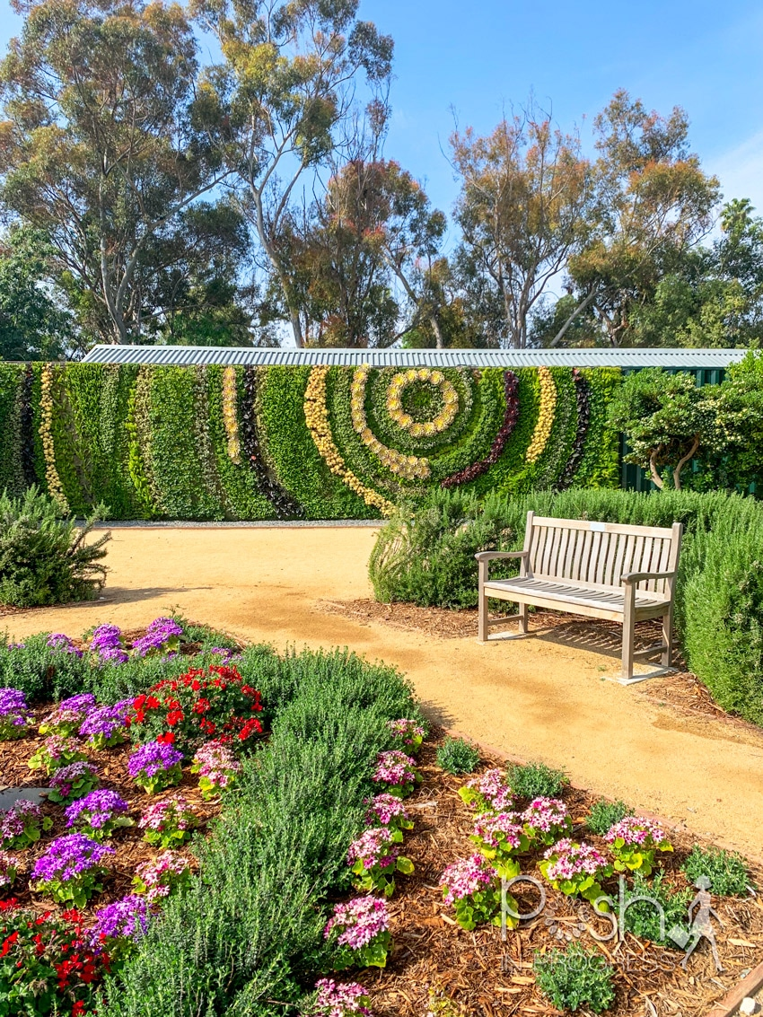 south coast botanic garden 4