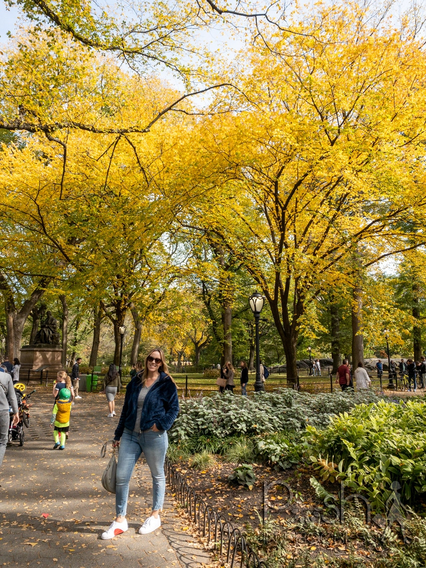 central park in the fall 4