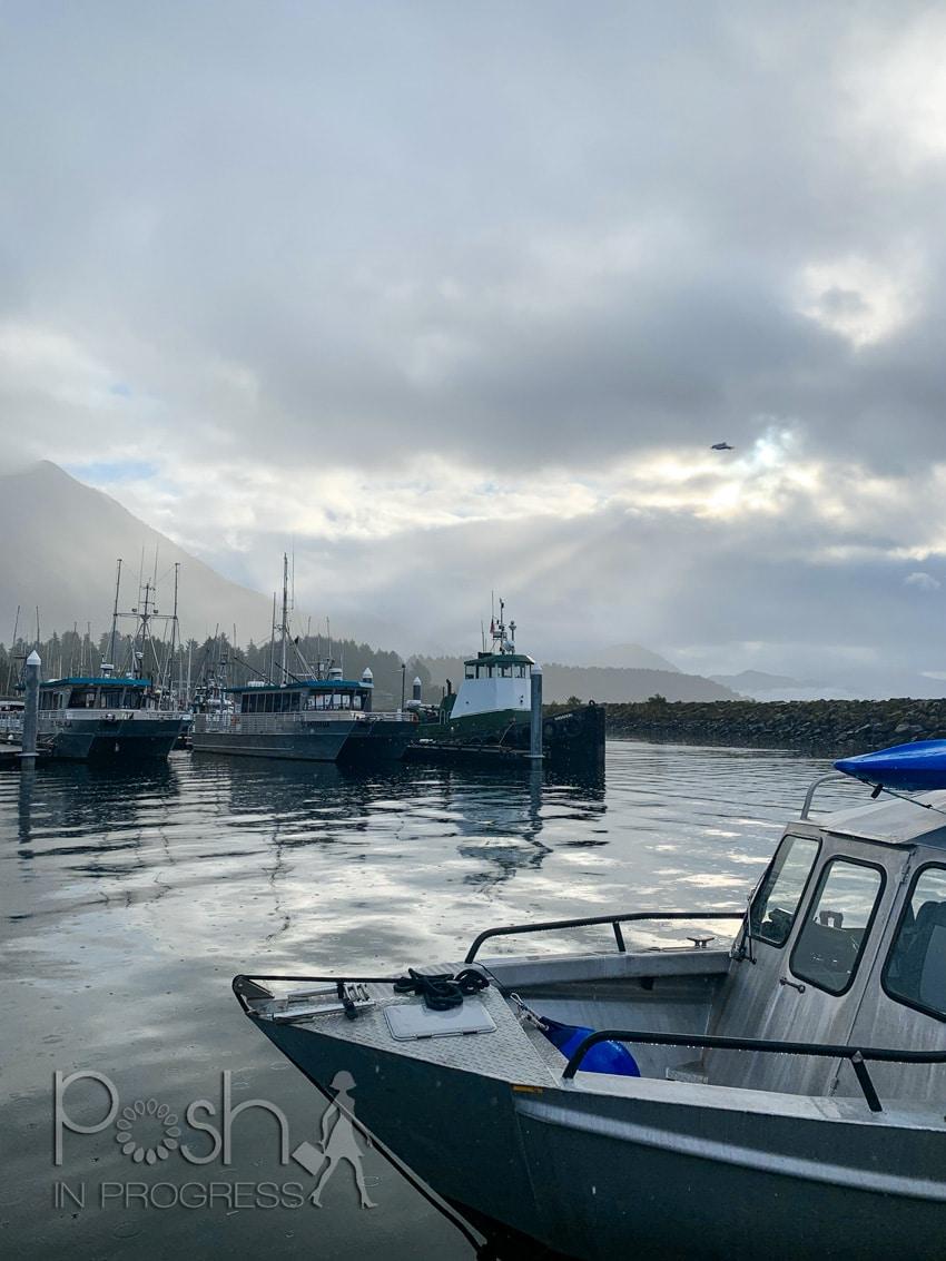 Sitka Alaska Whale Watching 2