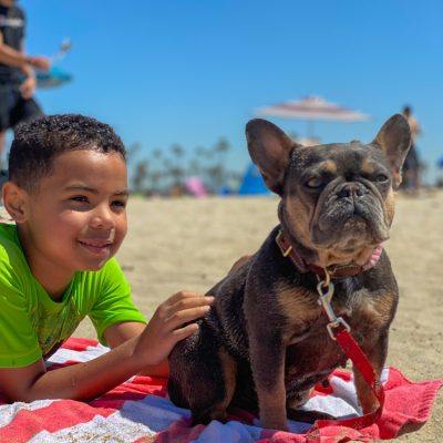 5 Essential Tips for Taking a Dog to the Beach in Honor of National Pet Day