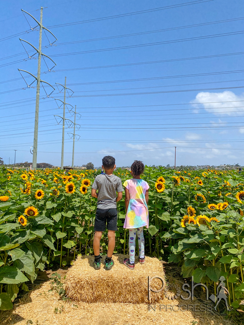 Carlsbad Flower Fields by popular LA lifestyle blog, Posh in Progress: image of a young boy and girl standing on a hay bale together and looking out at a field of sunflowers.