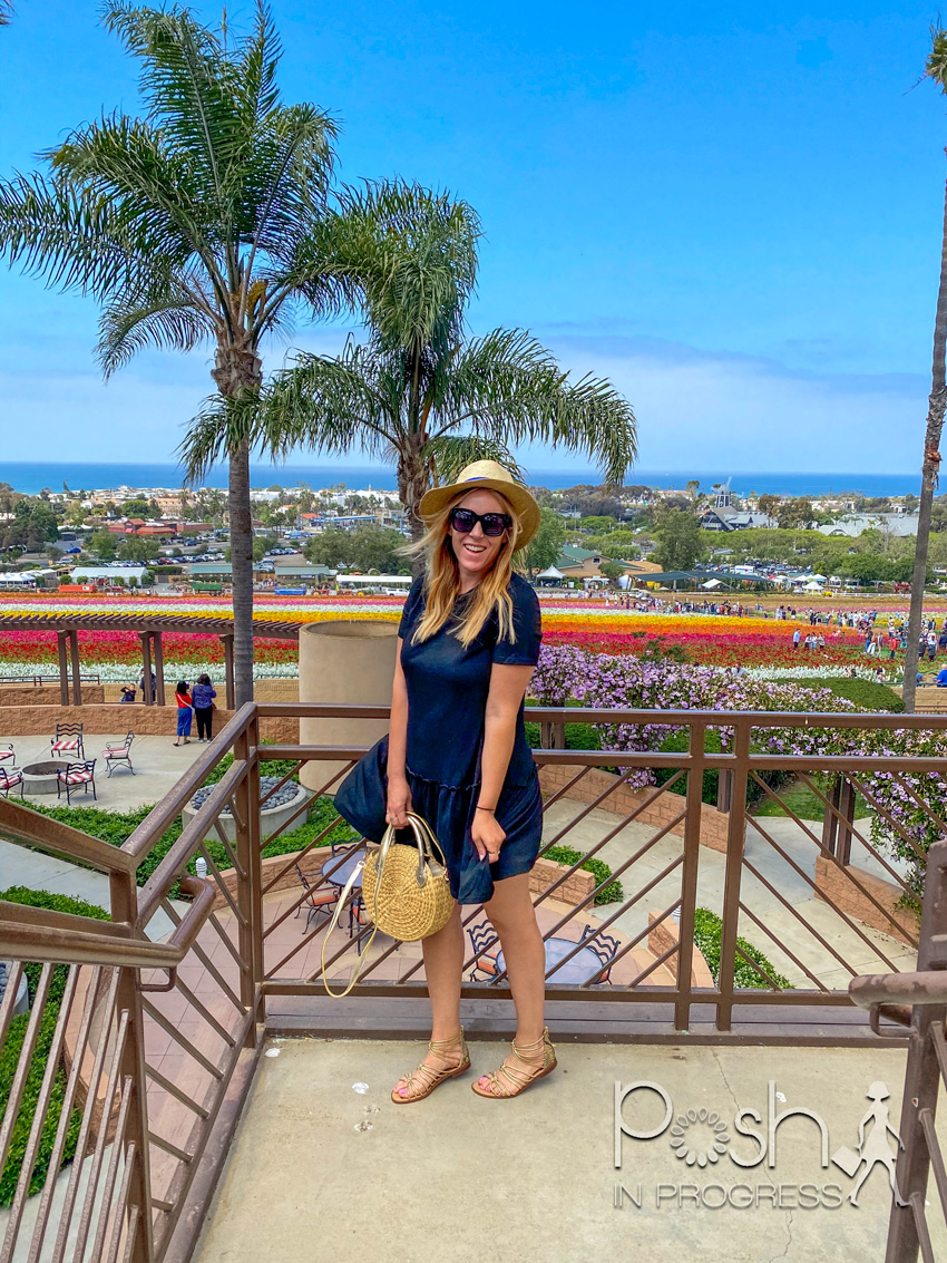 carlsbad flower fields | Carlsbad Flower Fields by popular LA lifestyle blog, Posh in Progress: image of a woman wearing a blue dress, straw sun hat, gold strap sandals, and holding a circle handbag while standing on some stairs that overlook the Carlsbad flower fields.