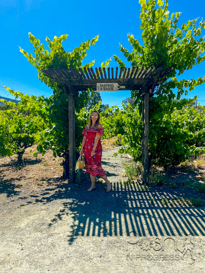 sonoma wine tour 3 | Sonoma Wine Tour by popular LA lifestyle blog, Posh in Progress: image of a woman standing under a pergola and wearing a red and blue floral print off the shoulder maxi dress and holding a woven circular bag.