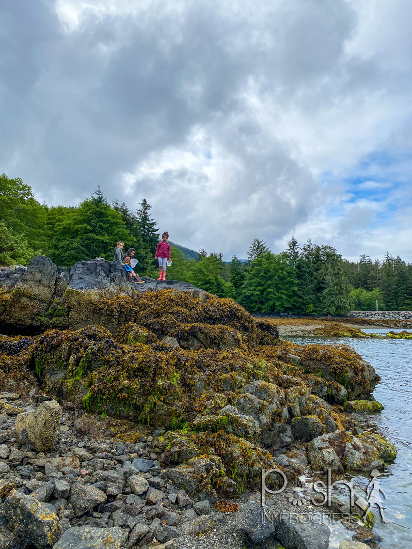 Things to do in Sitka Alaska by popular LA travel blog, Posh in Progress: image of some young kids looking at tide pools.